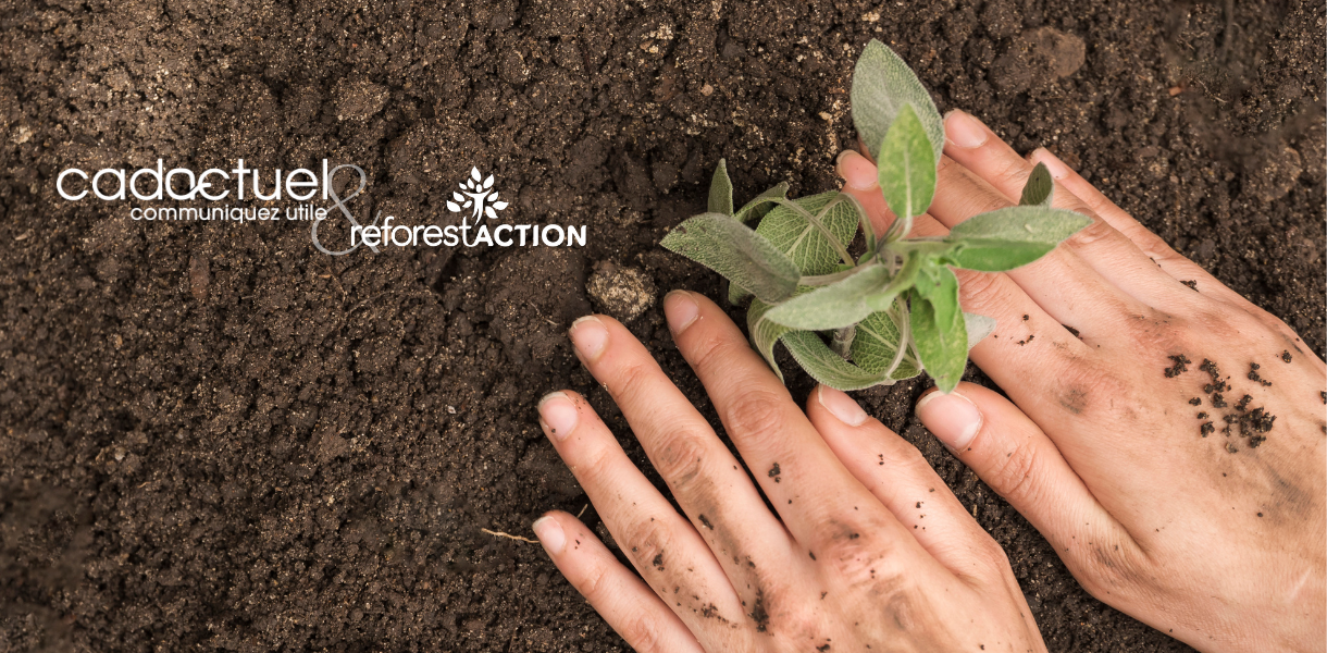 action de reforestation avec Reforestaction